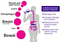 Alcohol / Infographics on alcohol and cancer from Cancer Research UK.
