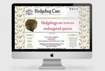 hedgehogcare.org.uk / Lincolnshire's famous little hedgehog hospital