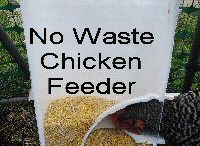 chook feeder