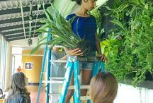 Educational Vertical Gardens