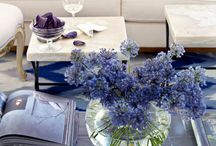 Blue! / Navy and all hues blue inspiration for home design.
