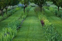 rêves de jardin