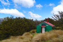 South NZ