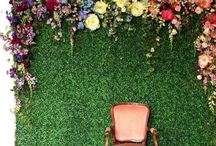 Wedding: Backdrop Wow / by Nancy Liu Chin