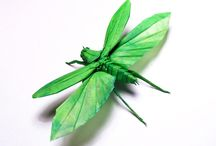 ORIGAMI / by Mare