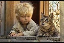 Kattenfoto's