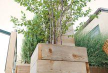 Tuininspiratie / De laatste trends van dak, terras en tuininrichting.