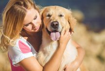 Do you hug your dog? Does your dog like it? Really? Are you sure? This article can help you understand why dogs aren't wild about hugs.