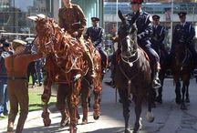 Toronto Mounted Police Unit