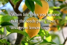 Quotes.....Garden Style!