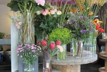 Foral arrangements