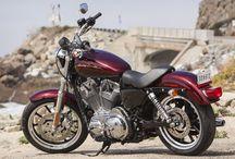 Harley-Davidson Girl / by Denise Magill
