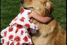 Doggie Hugs & Comfort