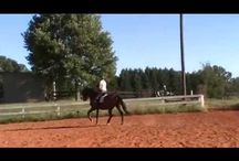 Bending from behind the saddle