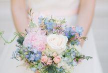 WEDDING PALLETTE  | Baby Blue & Pink