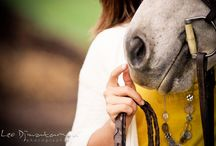 Inspiration : Horse photography