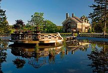 The Grounds / The Felt Mansion has many attractions including the beautiful water garden and the Felt's carriage house.