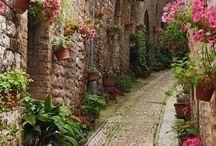 Zielono mi:) / Kwiaty,, dekoracje roślinne,,,,,