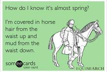 Spring Equestrian / Fresh ideas for Spring