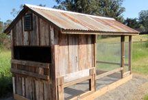 Homestead Farming
