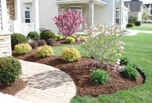 Front of house flower bed