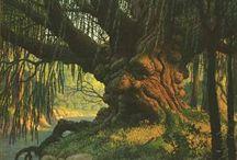 Merlin, druids, oak
