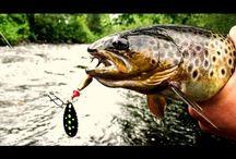 Ловля речной форели. Горная рыбалка.