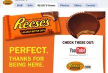 Brands, Infographics & Websites