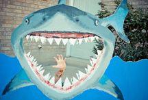 Aiden- SHARK party #9 / by Jessica Petersen