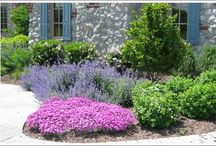 Planting Design / A few examples of beautiful landscape design projects.