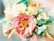 Wedding / by Anna Braun