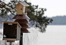 Linnut / ideoita ja ohjeita lintujen ruokintaan, pesinnän avustamiseen ja tarkkailuun