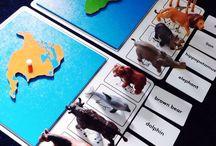 kıtalar haritalar