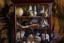 Cabinets des curiosités