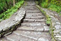 Woodland Garden Paths / Woodland path ideas to reduce erosion