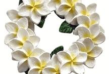 Hawaiian Stuff