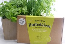 Herbalicious / Celebrating our love of herbs - growing, cooking, interiors and beauty