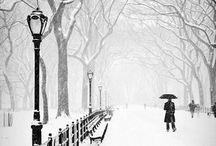 Snowy Winter / by Di Ap