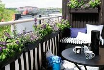 balkongen