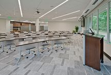 Inspiring Workspace / Companies can benefit from efficient and effective office lighting. Today's workplace is a complex and fluid environment, involving a wide range of visual tasks. Minimum glare on screens, low luminance contrasts around the workstation, energy cost reduction are just a few of the key requirements.