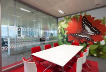 Office design / Office design and refurbishments from the slick and sublime to quirky and cool.
