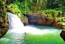 Tours Jamaica