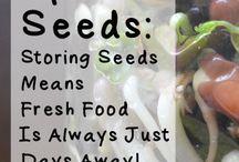 Basic vegan recipes and useful stuff