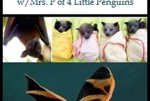 Animals for Homeschool Science / by CurrClick