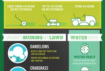 Yard & Lawn Care / With the proper know-how, maintaining your oasis will feel second-nature.