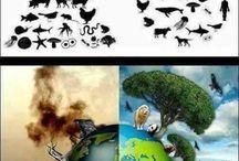 Tema ecologico