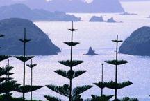 Linku2 Bay of Islands New Zealand