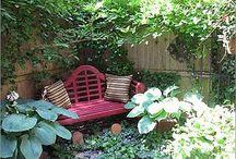 garden / by Lisa Z