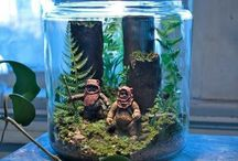 Terrarium Art / Terrarium DIY, inspiration, and ideas