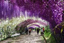 jardins, parcs ,iles, romantiques / romantisme